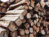 李凯夫:论木材保健