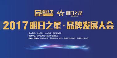 2017明日之星·品牌发展大会