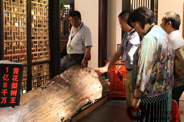 戴为红木展馆内价值1.8亿的海南黄花梨原木
