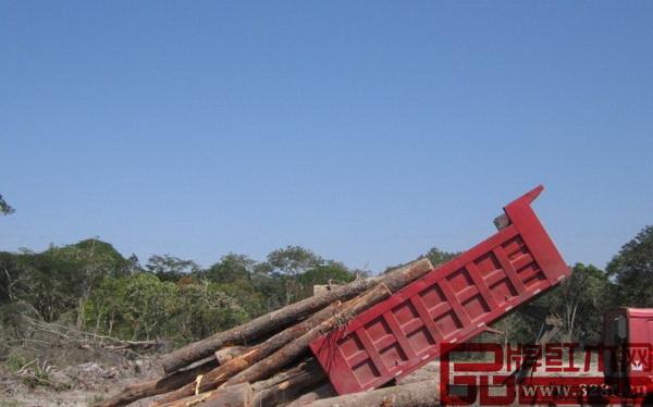上周,三十多辆拉载原木的车辆在非洲西南部国家安哥拉北宽扎拉丹多检查站被扣