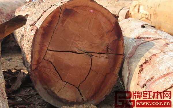 中国进口的原木有将近10%来自非洲
