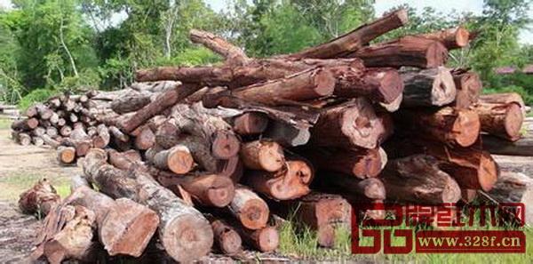 大红酸枝原木价格疯狂