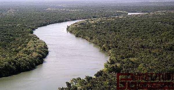 莫桑比克森林资源丰富