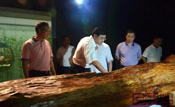 中山市委书记陈旭东(左三)参观千年走一回博物馆