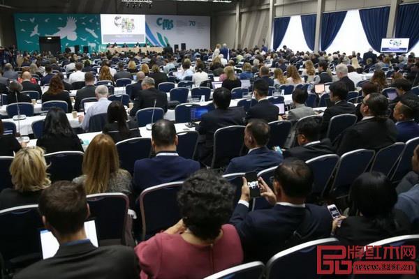 CITES常务委员会第70届会议(SC70)现场