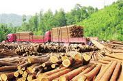 红木市场交投氛围偏冷 土豪消费6亿元能激活红木行业?