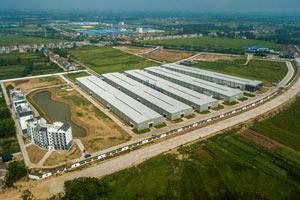 国寿红木湖北工厂:一座园林式观光红木工厂