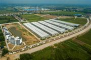 国寿千赢国际入口湖北工厂:一座园林式观光千赢国际入口工厂