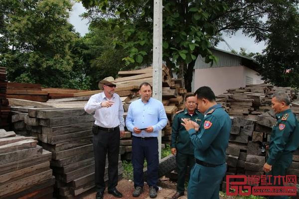 2017年,CITES官员在老挝视察被扣押的交趾黄檀木材现场