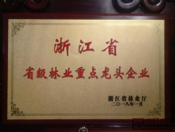 """大成尚品荣获""""2017年度省级林业重点龙头企业""""称号"""