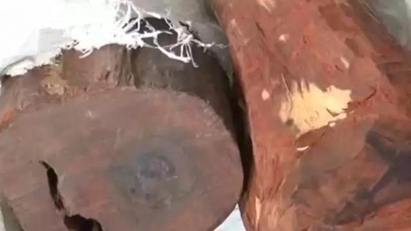 一周亚博体育下载苹果天下事:50余吨走私紫檀木被查获 | 第79期