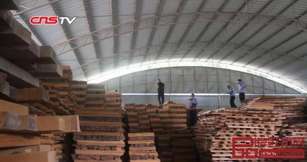 云南10万吨走私花梨、紫檀、红酸枝等木材被查,价值高达数亿元