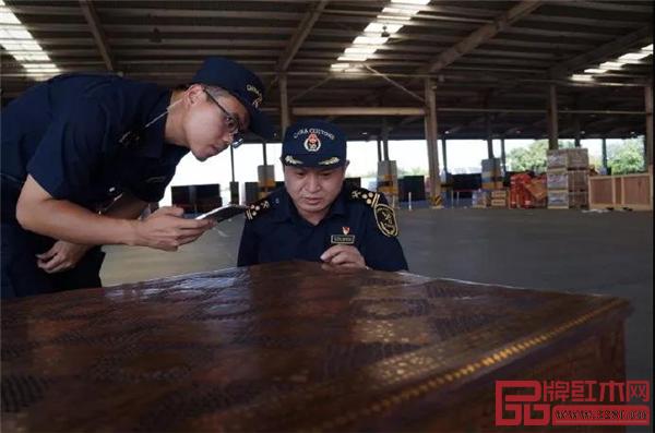 天津海关所属新港海关查获一批檀木伪报杉木的货物