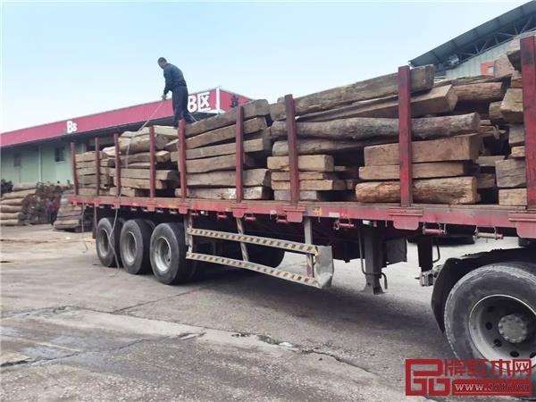 2017 年 2 月深圳观澜新阳光千赢国际入口交易市场,大果紫檀日出量保持 30 个货柜左右,市场上发出的货和回来的货也是一波接一波