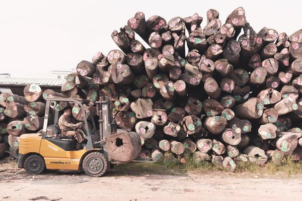 亚博体育下载苹果家具行业要以新的知识观审视木材问题