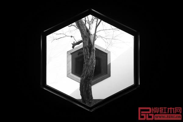 窗含古木,用借景的手法,产生了独特的景观