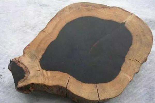【木材百科】厚瓣乌木