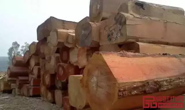 缅甸花梨有没有收藏价值?缅甸花梨家具能保值吗