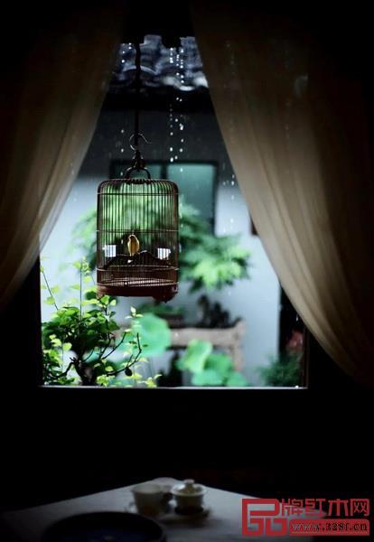 窗下,听雨揽月