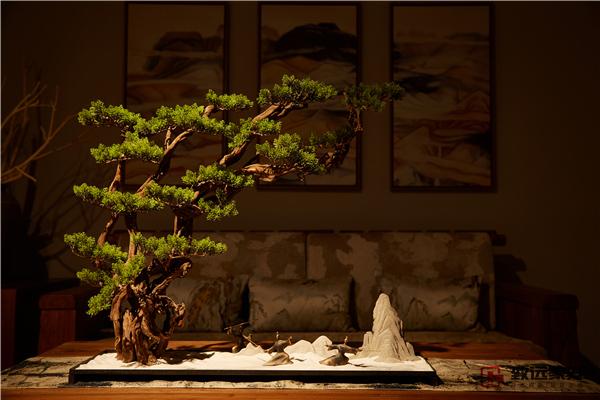 珍赏|风雅如斯,品味老榆木茶空间之美
